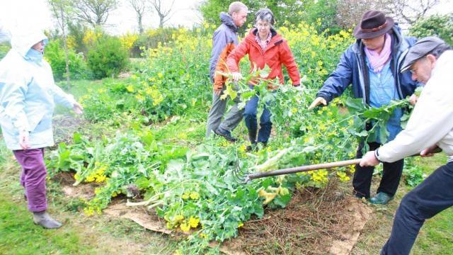 La permaculture l essence du jardin nourricier ouest for Jardin cultural uabc 2015
